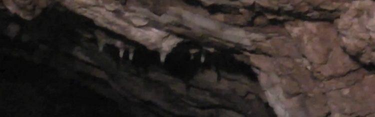 Nesprístupnená jaskyňa. Dĺžka jaskynných priestorov je okolo 200 metrov.Má zvetranú sinitrovú a kvapľovú výzdobu.